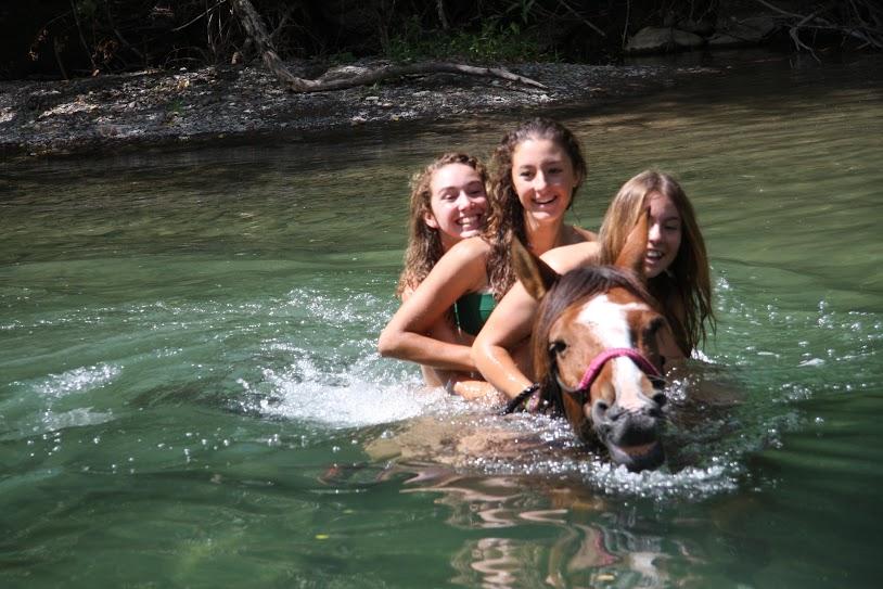 caballo al agua del río Aragón