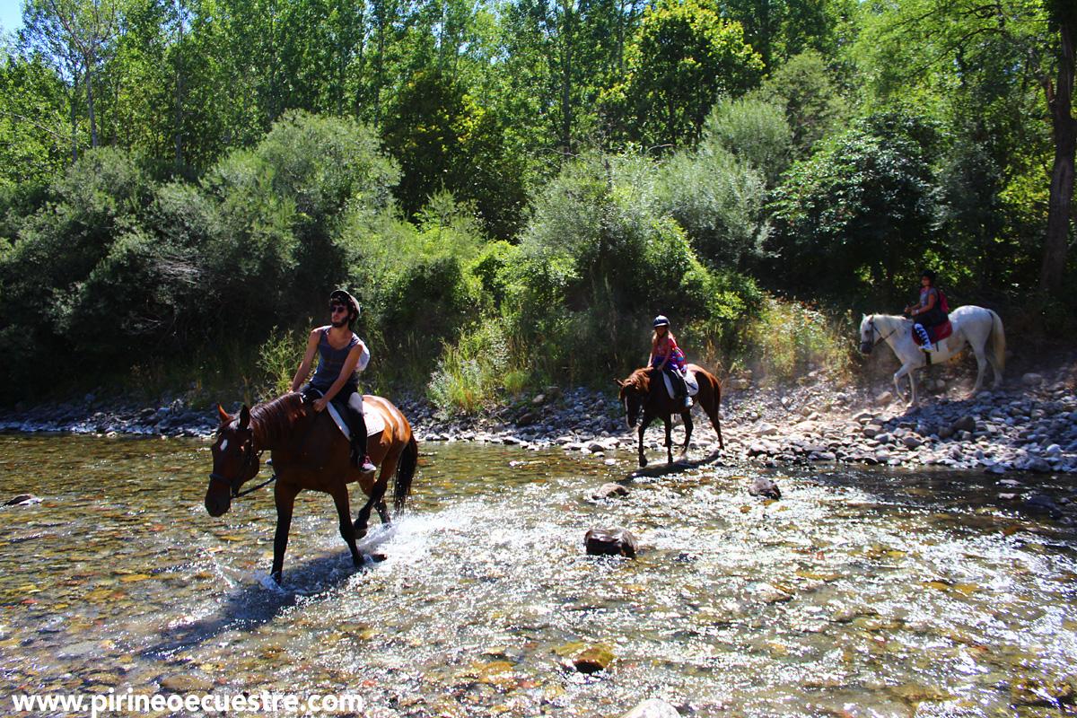 Campamentos hípicos con idiomas en Jaca (Pirineos)