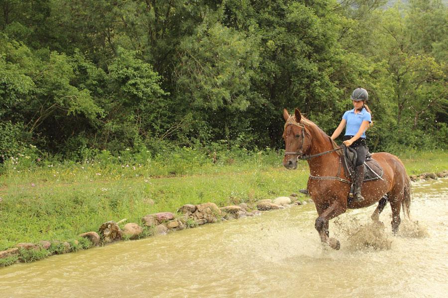 Campamento de hipica y equitacion