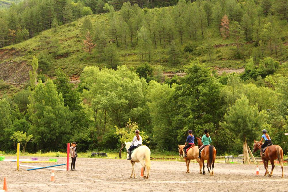 Campamento caballos pirineo