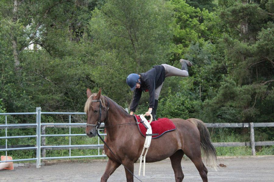 campamento Pirineo Ecuestre equitacion