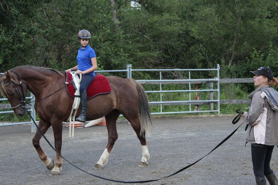 Campamento de caballos