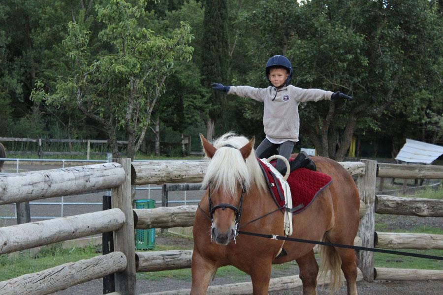 Campamento de caballos Pirineo