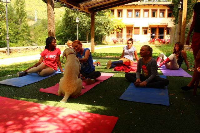 yoga campamentos hipicos Pirineo ecuestre
