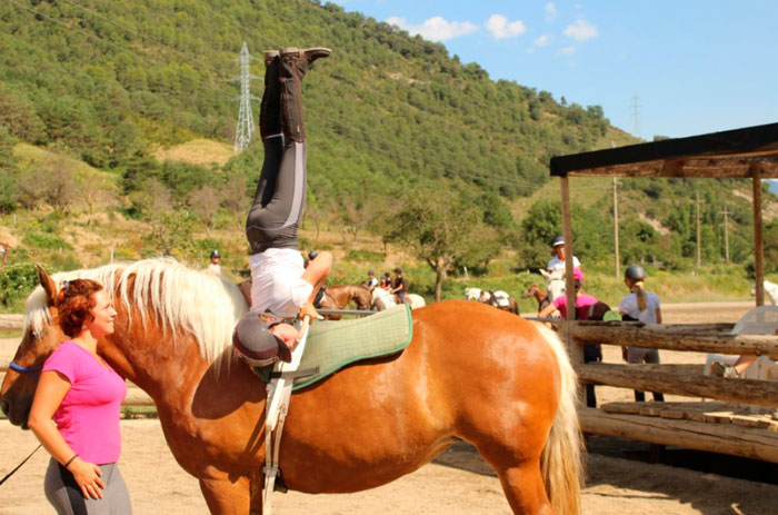campamentos de caballos en jaca pirineo ecuestre