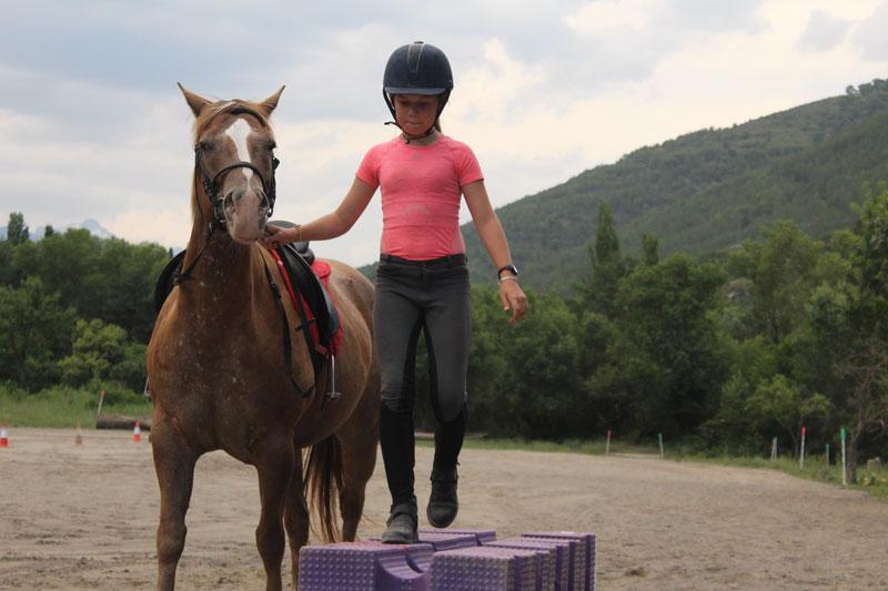 pirineo ecuestre equitacion