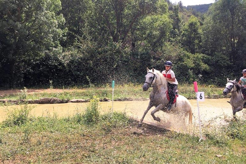 campamentos de caballos en jaca