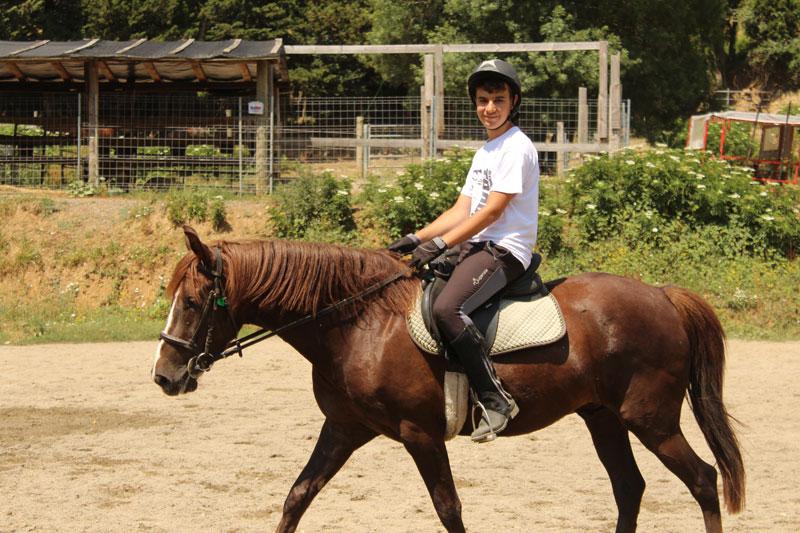 campamentos de hipica y equitacion