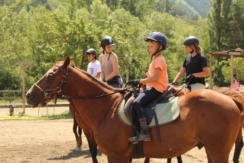 campamentos de caballos