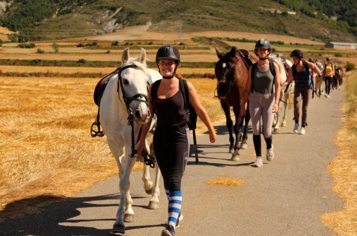 campamentos de verano de caballos