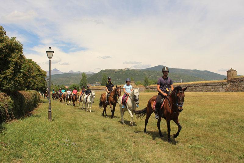 campamentos caballos jaca
