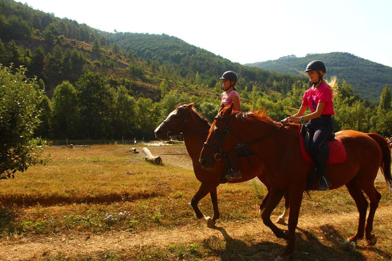 caballos-pirineo-ecuestre