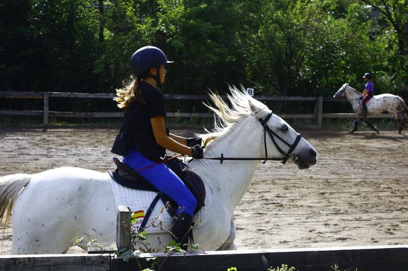 campamento-equitacion-verano