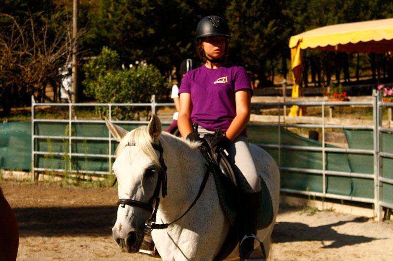 campamentos-de-caballos-equitacion