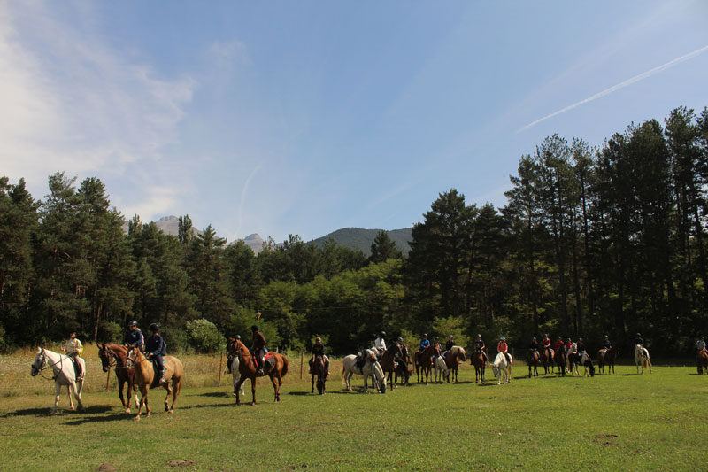 campamentos-de-verano-equitacion