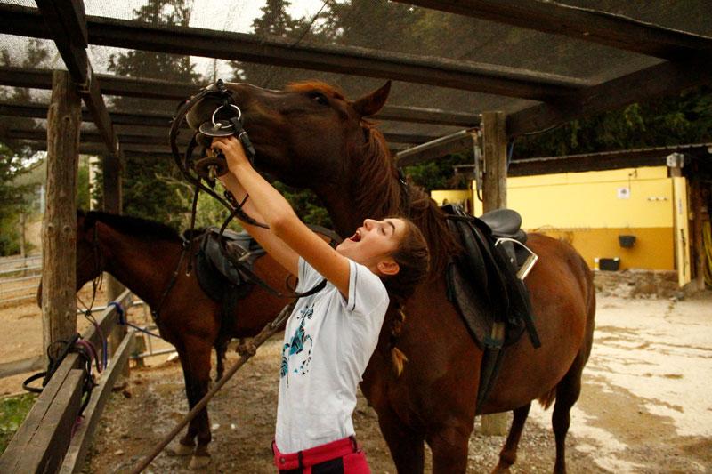 campamentos-equitacion-verano