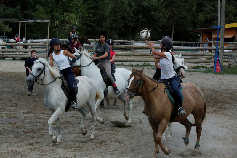 campamentos equitacion verano
