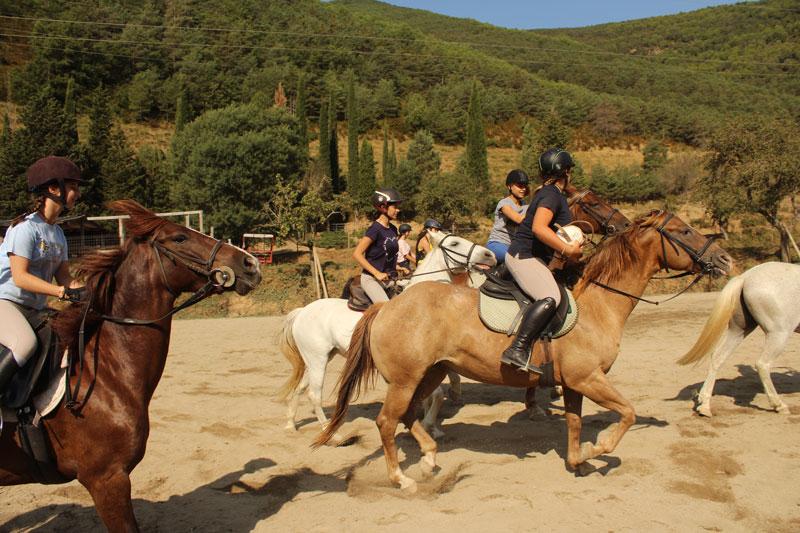 horseball-campamentos-verano
